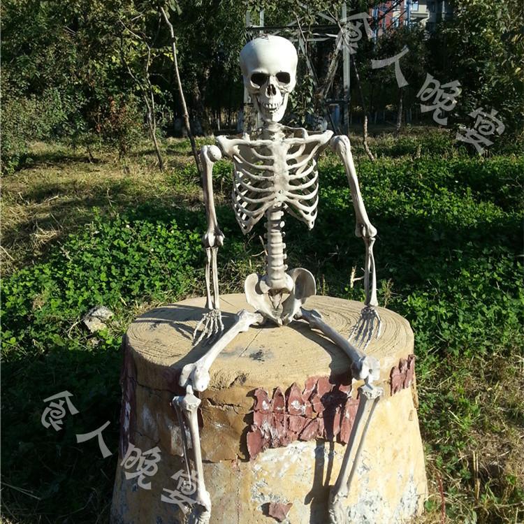 万圣节鬼屋恐怖道具密室逃脱装饰盗墓仿真塑料人体骷髅骨架摆件