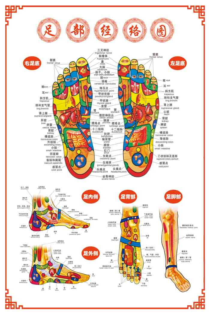 Buy 0 V Foot Reflex Zone Foot Points Chart Reflexology Foot Chart Acupuncture Points Chart Reflexology Foot Hole Diagram Human Body Acupuncture Points Posters In Cheap Price On M Alibaba Com