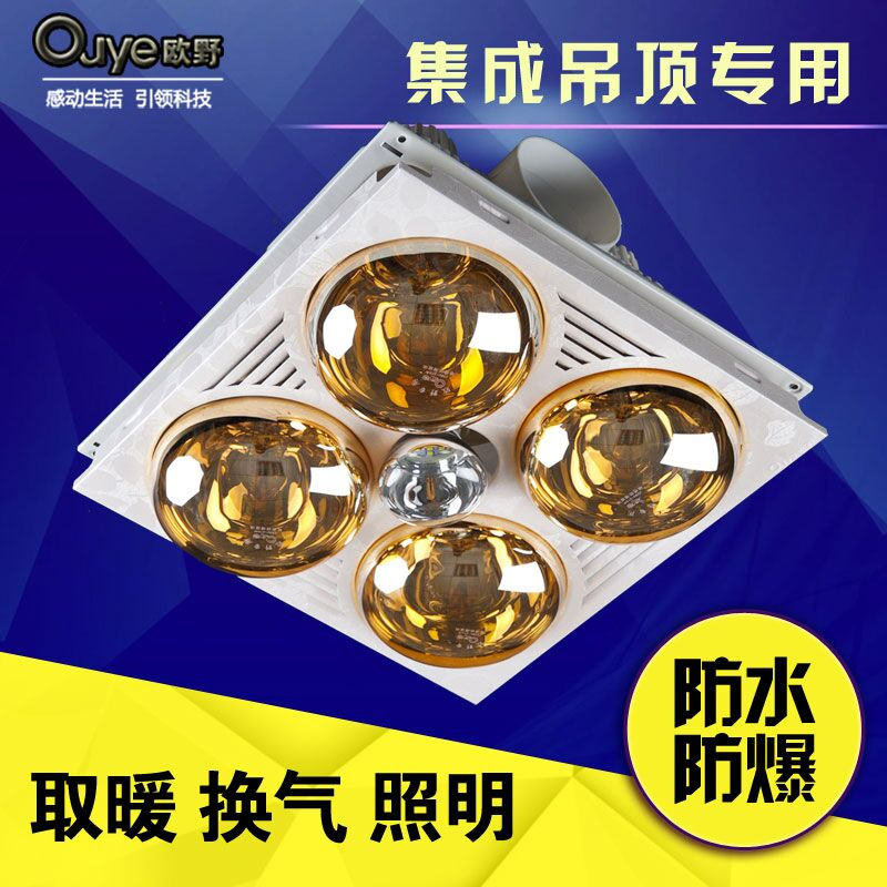 Buy European Wild Multifunctional Integrated Ceiling Yuba Yuba Light
