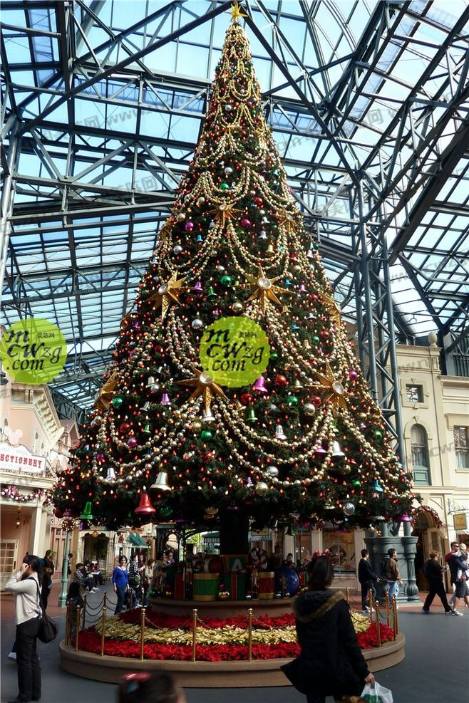 Traditional Christmas Tree.Buy Search Holland America Loading Large Christmas Tree