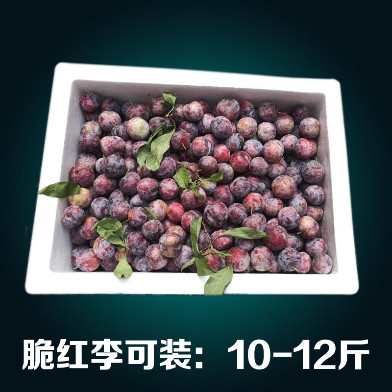 十斤装3号加厚泡沫箱 包邮邮政大号快递箱生鲜水果冷藏保鲜箱
