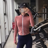 Net red was thin sports jacket female quick-drying breathable zipper running long-sleeved tight fitness jacket yoga suit top