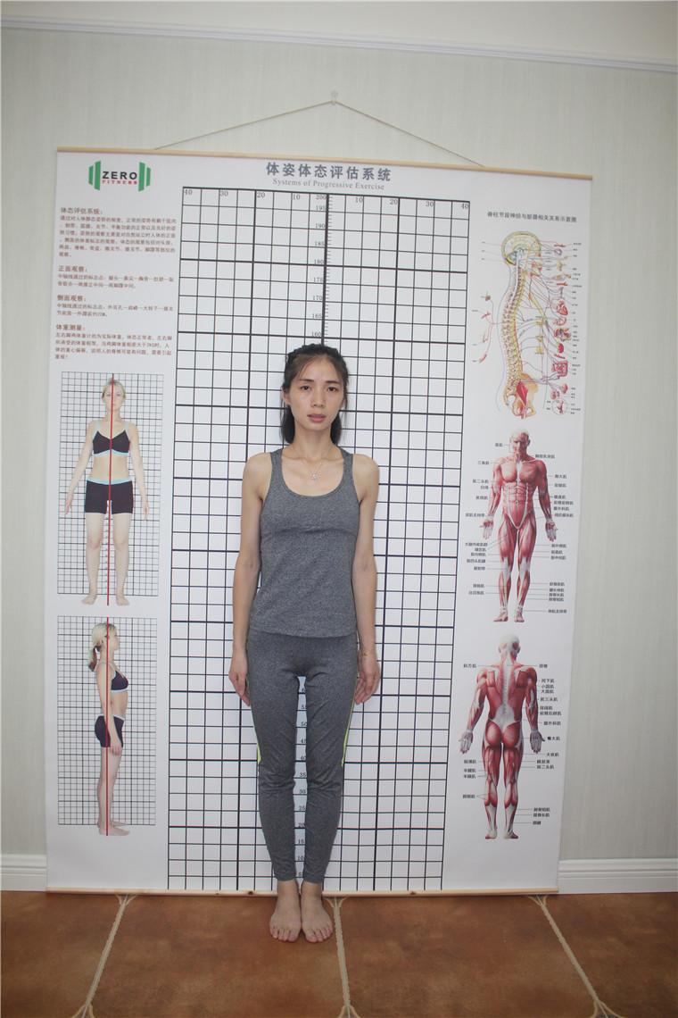 私教瑜伽工作室壁画 健身房健美运动保健中心墙纸 体态评估表壁纸