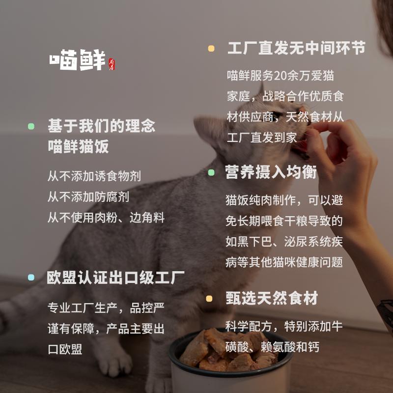 纯肉猫饭10包多种口味虾三文鱼自制生骨肉湿粮手工鲜粮猫粮主食罐优惠券