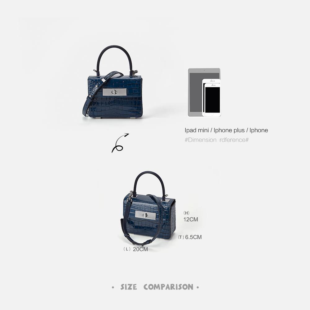 潮真皮时尚手提斜挎包小 2020 高级感法国小众包包女包新款 CHICWIND