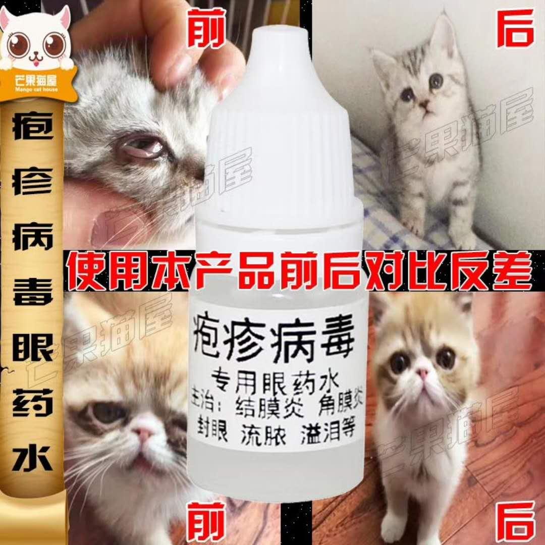 猫狗疱疹眼药水结膜炎角膜炎滴眼宠物通用