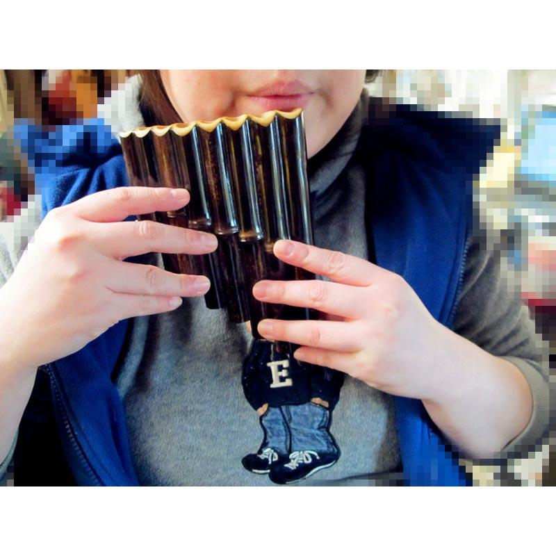 调 C 中国萧 竹萧 排萧 民族吹奏乐 苗排箫 8 音 8 民族乐器 包邮