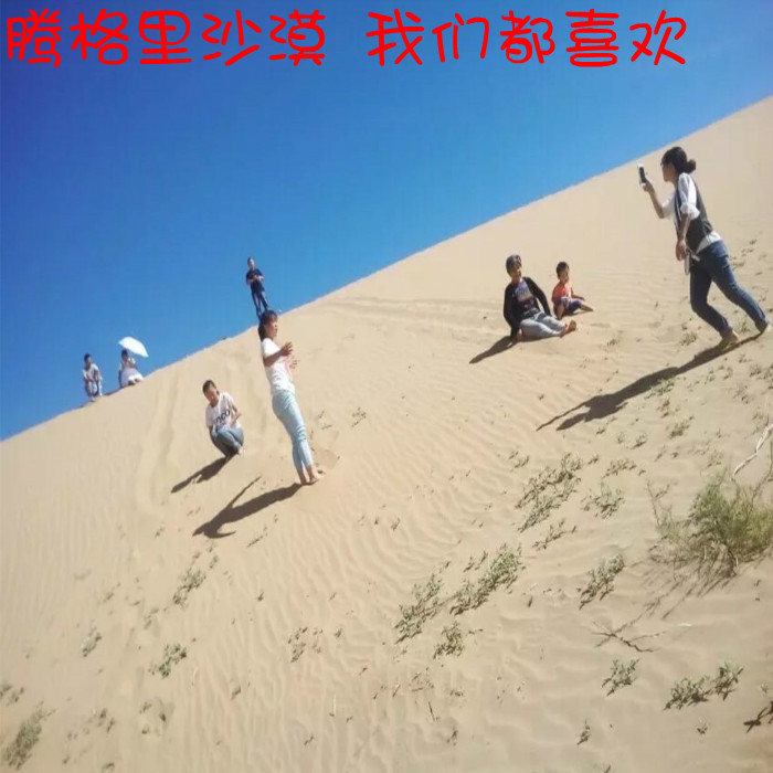 沙漠天然沙子 轻泥土沙 爬虫宠物冬眠沙子白色沙子黄沙 细沙 甩卖