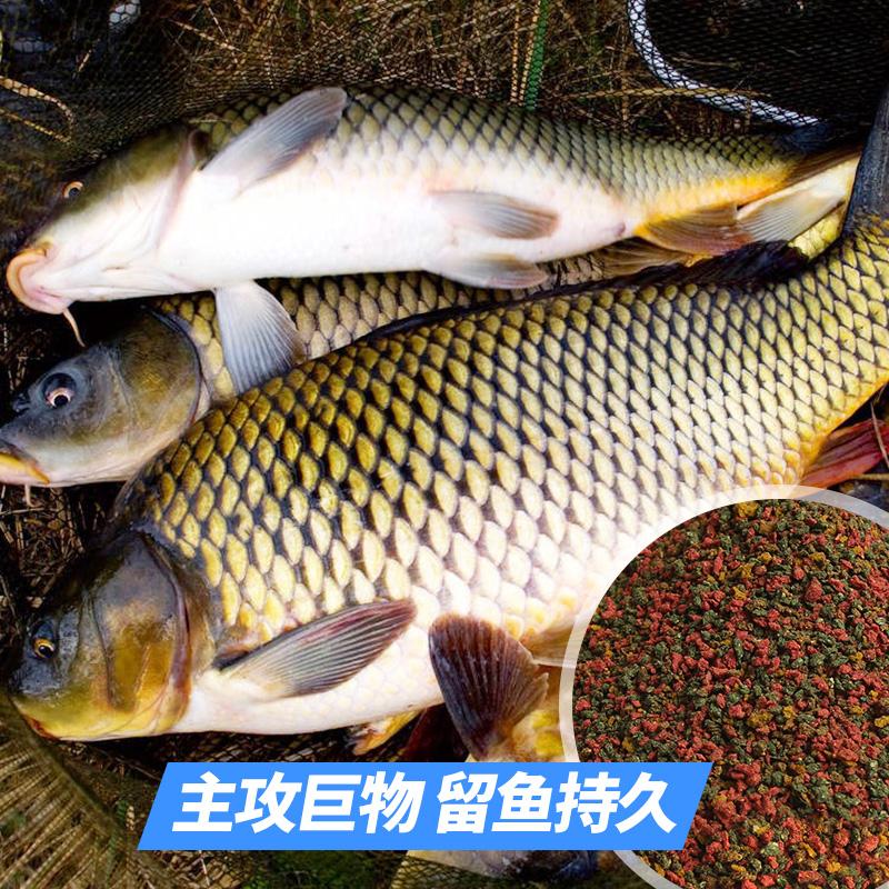 钓鱼王鱼饵套装钓饵料秋季鲤鱼螺鲤鱼食套餐野钓黑坑打窝饵料配方