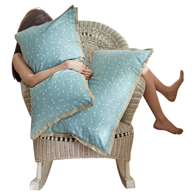 枕芯内胆套全棉双人单人儿童枕头套 48x74cm 南极人纯棉枕套一对装