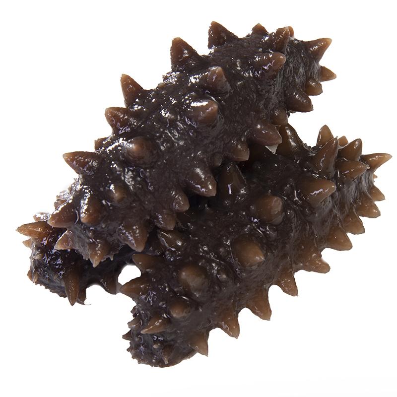 根起拍 10 俄罗斯进口纯天然野生即食海参单个装新鲜淡干海参单根装