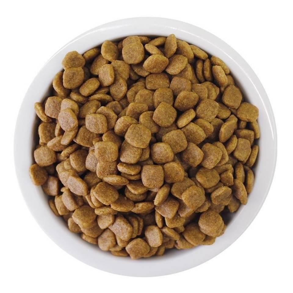 伯纳天纯味臻纯小中大型成犬狗粮10kg贵宾金毛边牧犬主粮通用20斤优惠券