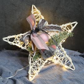 莘蝶 北欧led五星圣诞花环门挂咖啡厅房间家用藤条仿真花圃装饰品