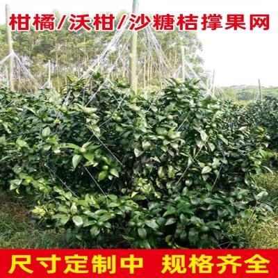 果树农用沙糖果种植撑网挂果吊网柑橘柑果爬藤网沃网桔网