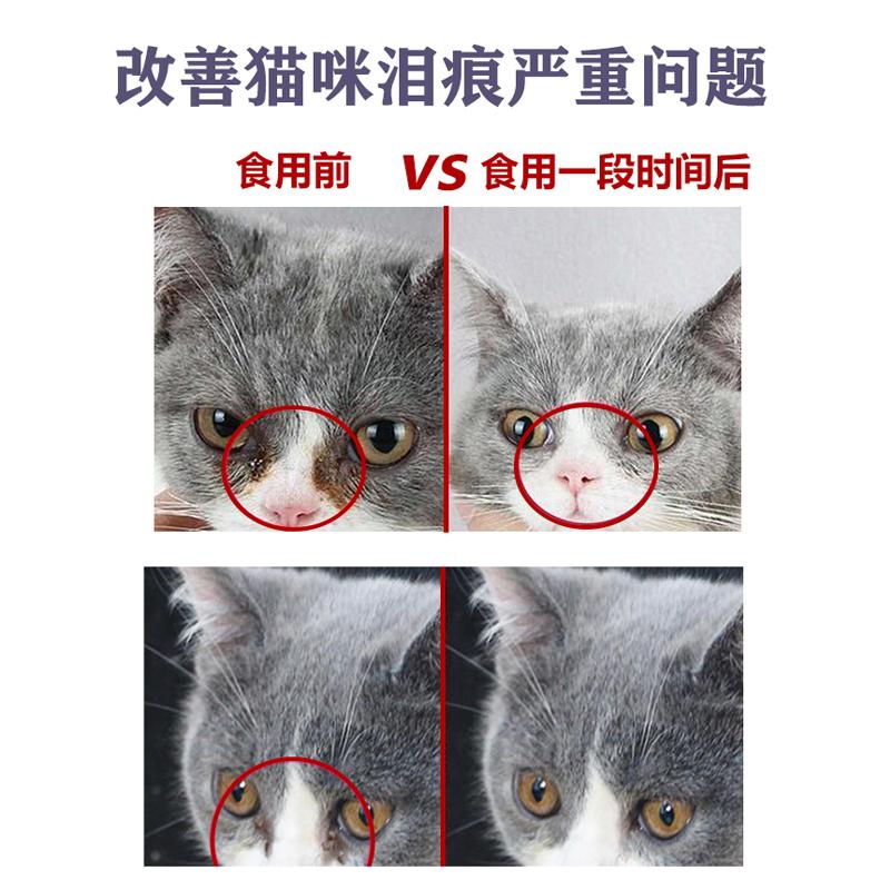 纳特威宠成猫幼猫猫粮增肥发腮主粮鱼肉味英短蓝猫布偶通用2kg4斤 - 图2