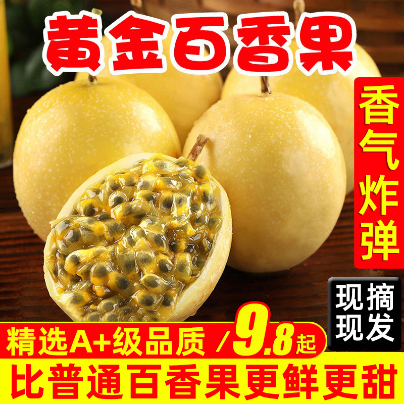 黄金百香果新鲜包邮5斤包邮大果3当季百香果黄金果新鲜现摘鸡蛋果