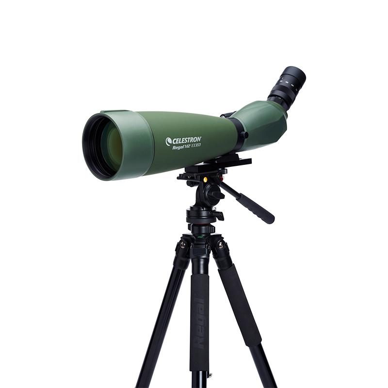 美国星特朗Regal M2 80 22-66x100 F-ED观鸟镜单筒望远镜高倍高清