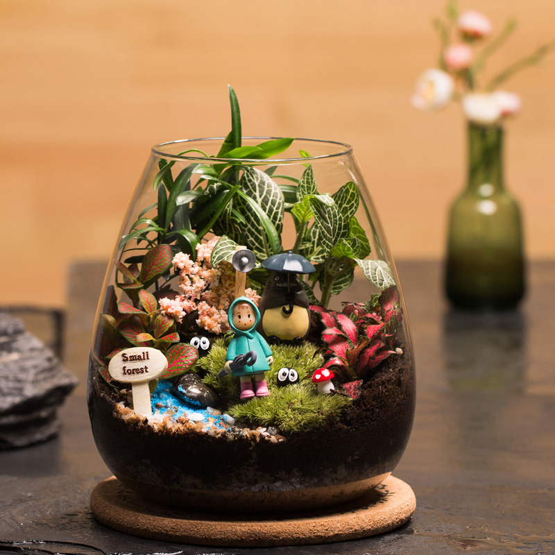 苔藓生态瓶龙猫玻璃花房,100元左右送女朋友创意礼物