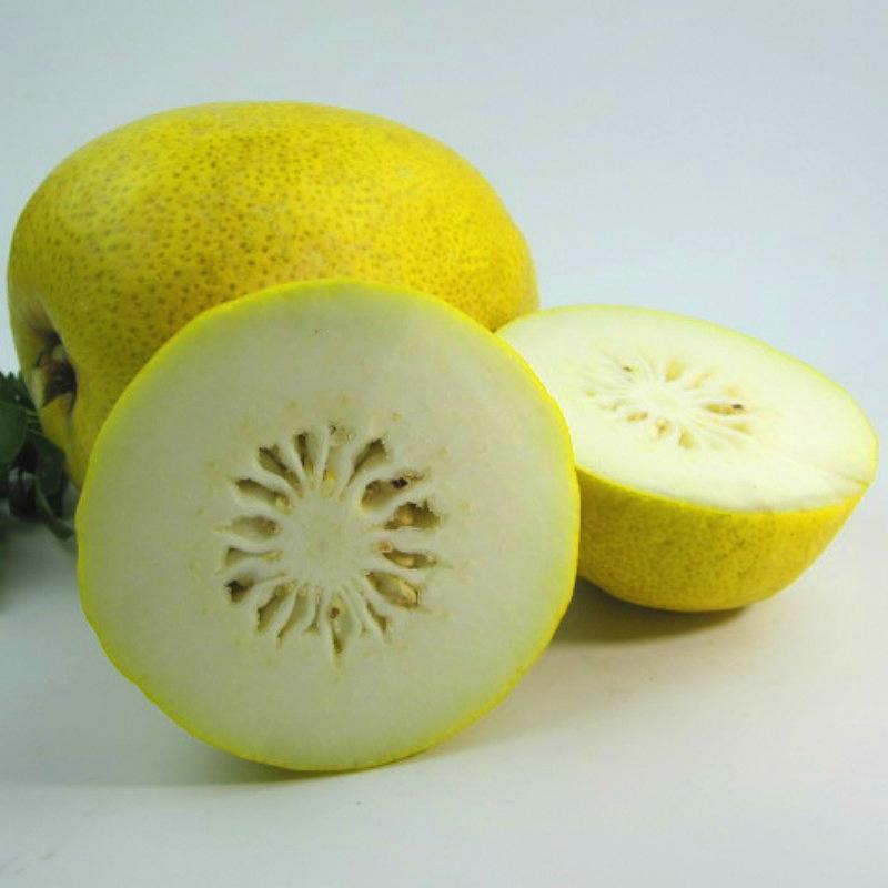 云南大理香橼果果子香炎香圆拂手柑瓜香圆果枸橼果农家特产水果