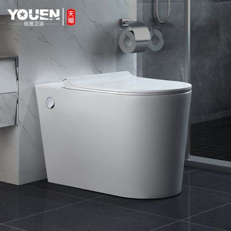flush toilet without water