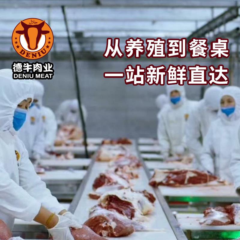 【伊顺祥】筋头巴脑500g冷冻牛肉筋新鲜谷饲生牛肉清真牛肉牛腩筋