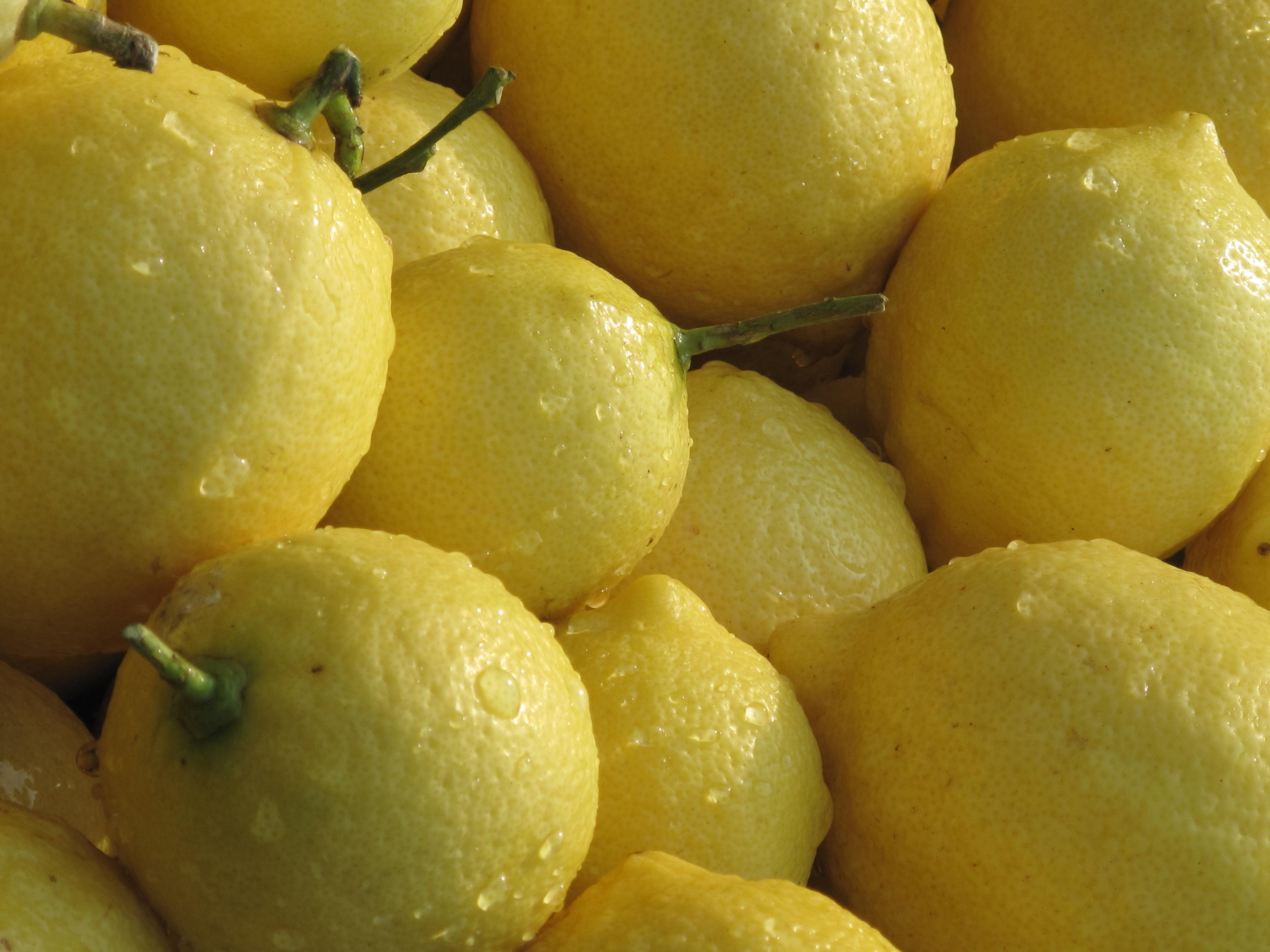 一二级混装 安岳柠檬 尤力克 黄柠檬  新鲜水果 黄小果2斤包邮