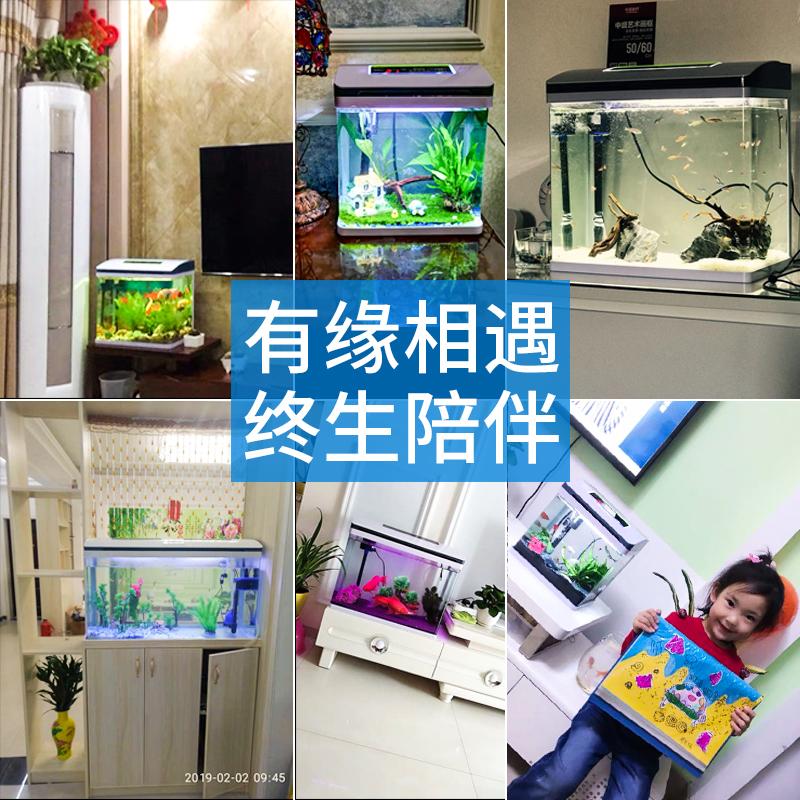金鱼缸客厅小型鱼缸创意水族箱玻璃免换水生态桌面长方形家用懒人