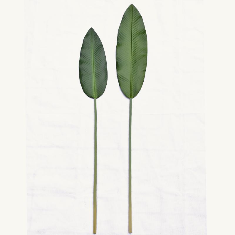 仿真树叶龟背叶拍照道具ins美甲美食摄影道具背景摆拍装饰品道具
