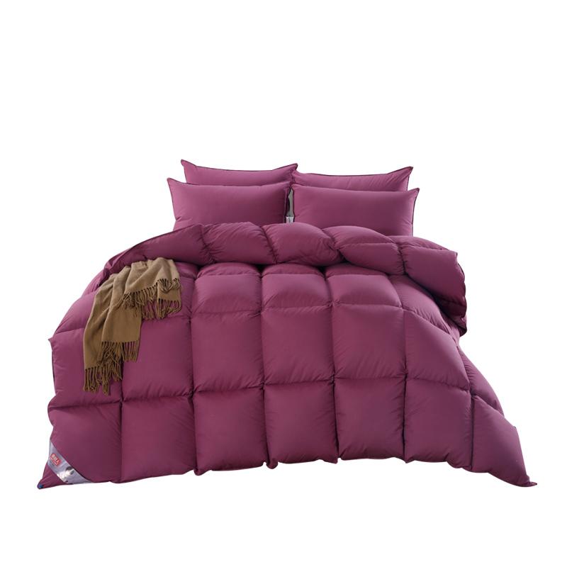 南极人冬被加厚保暖白鸭羽毛被芯酒店羽绒被芯鸭绒被宿舍被子正品