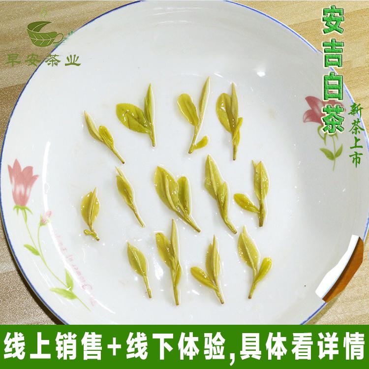 250g 年黄金茶黄金芽黄金叶黄金白茶特级散茶散装 2018 正宗安吉白茶
