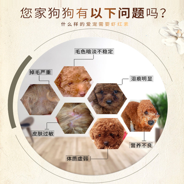 New favorite of Kang astaxanthin red brown hair nutrition cream VIP Teddy red brown dogs cats beauty hair skin care products