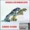 捷豹车标立标金属标XJL XFL XF XJ XEL XE改装机盖车头标原车立标