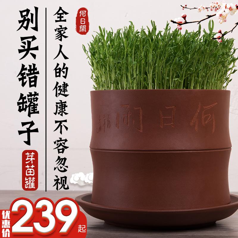 【脆生清甜】何日闲发豆芽机罐发豆芽盆家用全自动紫砂大容量正品