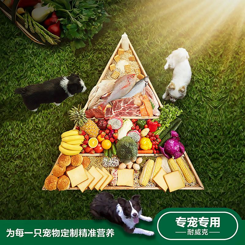耐威克犬主粮 全犬种专用奶糕狗粮3kg通用型天然鸡肉味营养配方粮优惠券