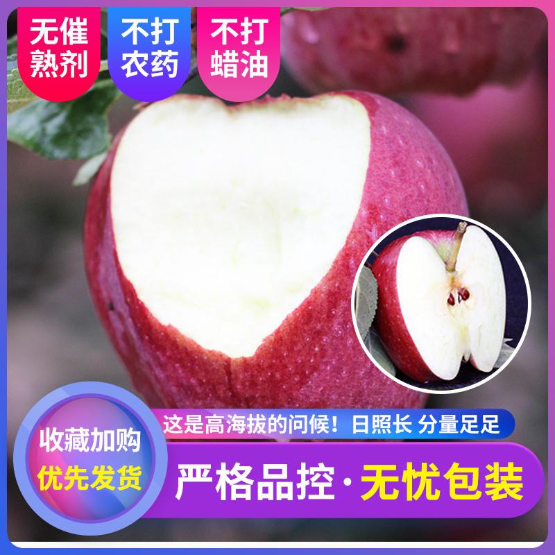 【乡隆】甘肃新鲜天水花牛苹果水果带箱5斤现摘红蛇果礼县粉面