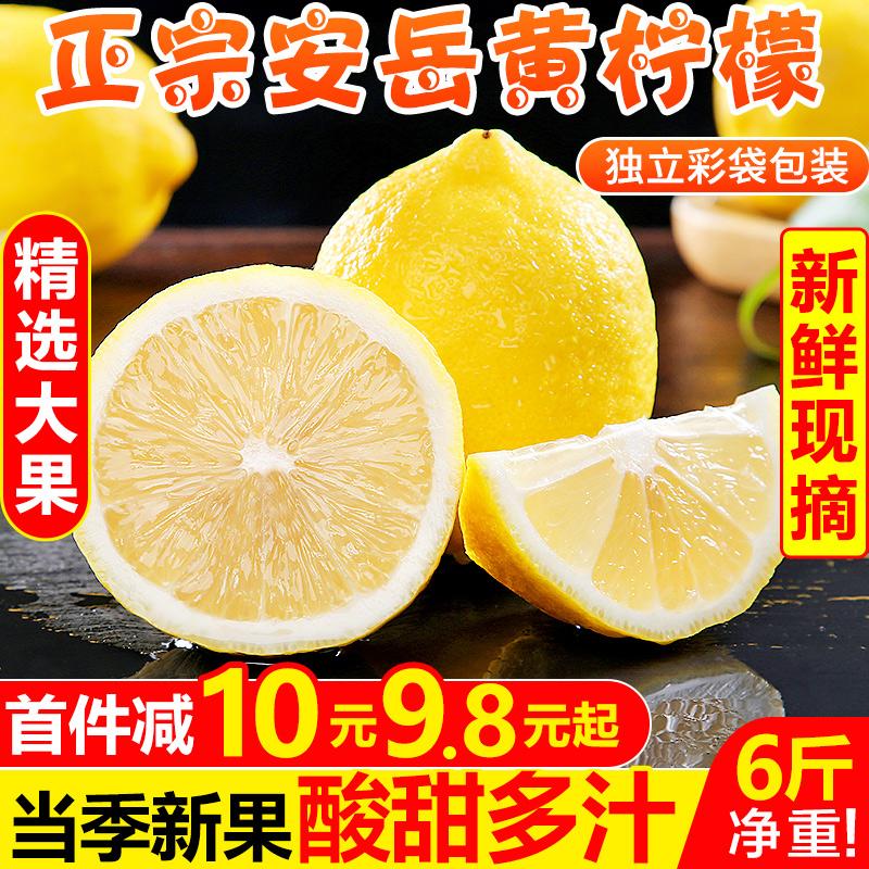 甘福园 四川安岳黄柠檬6斤新鲜当季水果现摘一级鲜柠檬青批发包邮