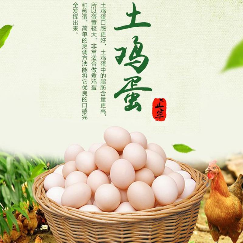 正宗林下散养新鲜土鸡蛋40枚农家自养草鸡蛋 初生蛋柴鸡蛋笨鸡蛋