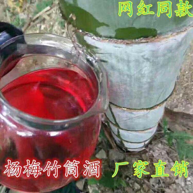 度梅子酒竹桶酒 52 竹酒杨梅竹筒酒原生态杨梅酒野生果酒自酿竹子酒