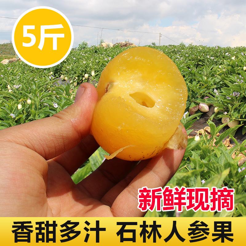 云南特产石林人参果5斤圆果包邮新鲜当季孕妇水果树上熟人生果