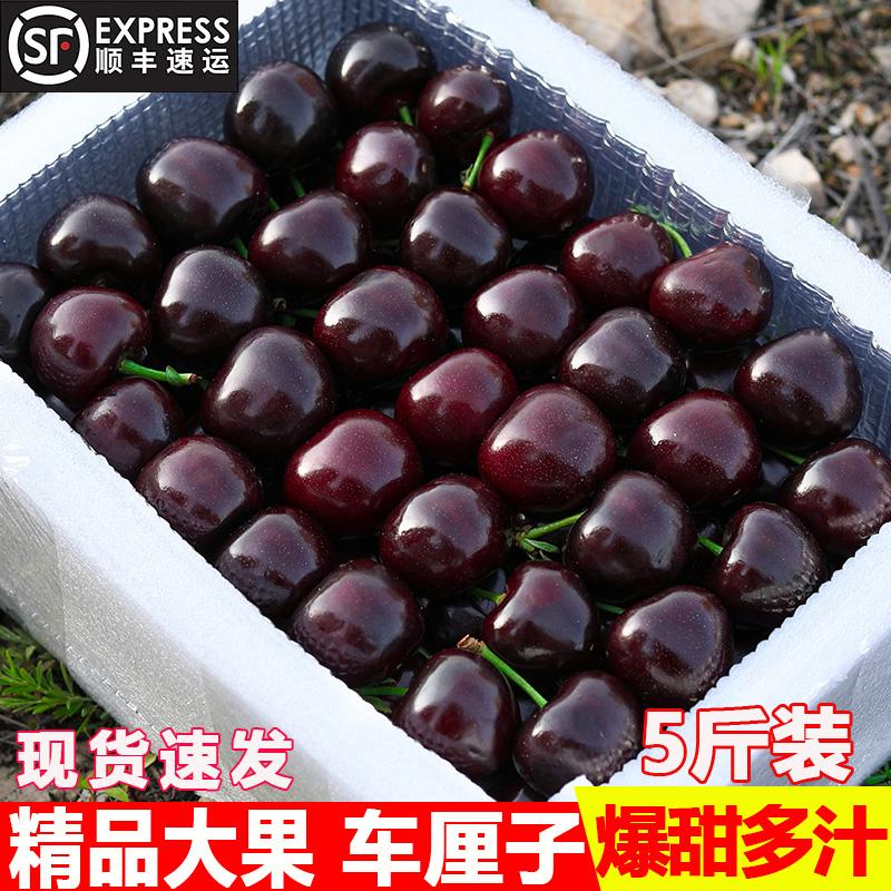 美国进口车厘子新鲜水果5斤大樱桃顺丰包邮应季当季整箱J孕妇JJJ