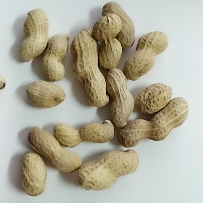 老街口蒜香奶香花生420gx4袋水煮花生米带壳零食炒货干果年货 No.1