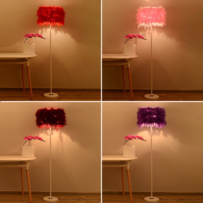 创意欧式羽毛客厅落地灯卧室温馨北欧台灯装饰床头结婚庆时尚灯具