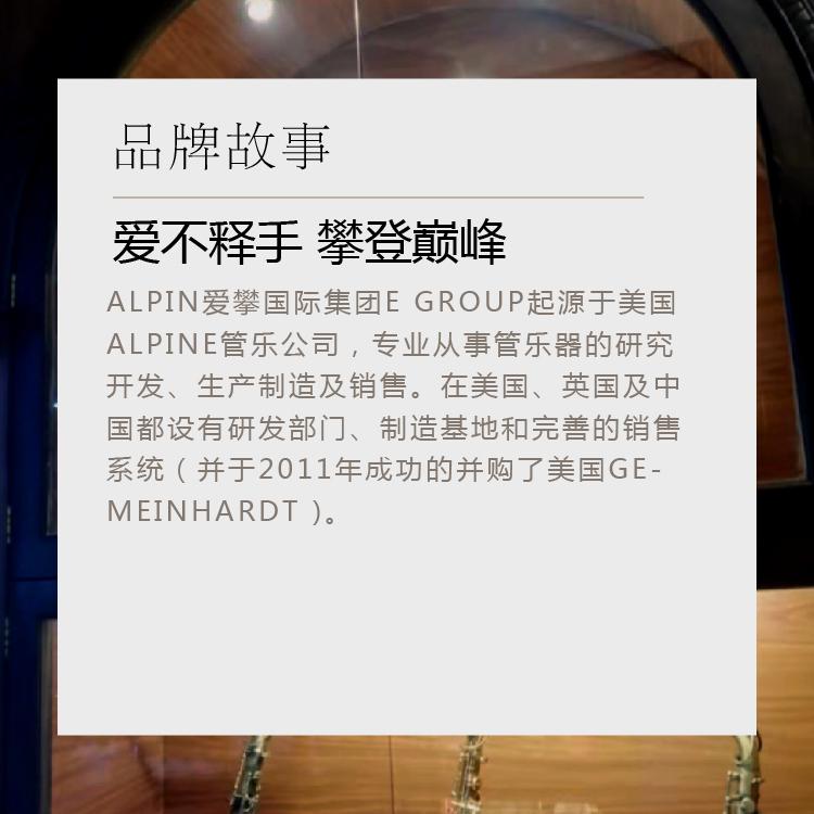 次中音王晓楠老演奏专用 B915 爱攀降 AIpine 美国 大众萨克斯推荐
