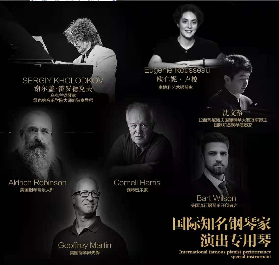 三角钢琴黑色白色专业 231 gp 子昊皇冠钢琴