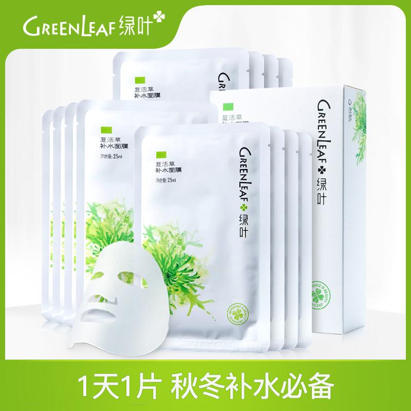 綠葉復活草深層補水保溼面膜收毛孔控油含精華液麵膜貼12片