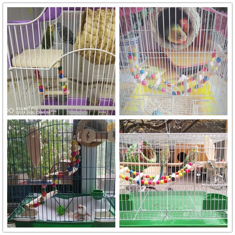鹦鹉云梯爬梯 鸟用玩具彩色秋千木梯子 虎皮牡丹鹦鹉站杆鸟笼配件