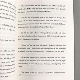 正版包邮 老人与海 全英文版 海明威  原版原著无删减 世界文学名著小说英语阅读图书籍 初高中大学生英语课外读物