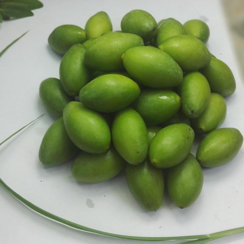 福建福州新鲜青橄榄青果500g现摘产地直发长营品种生吃拍2斤包邮