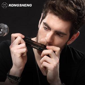孔声亚光黑口琴24孔男女初学者学生用自学成人专业演奏级复音口琴