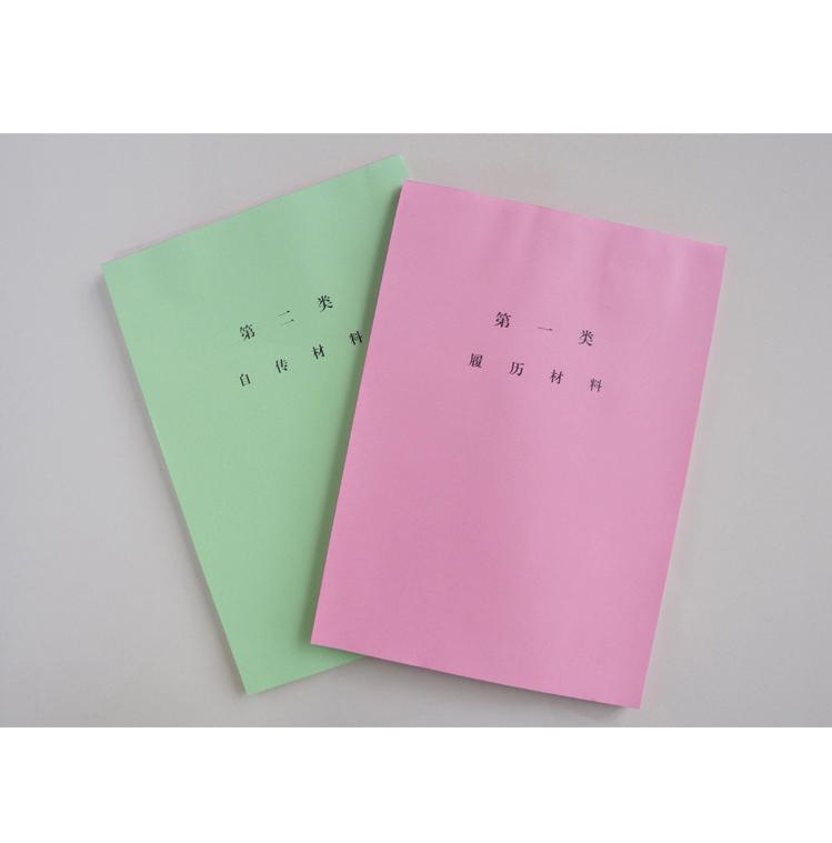 50套干部档案盒人事系列配履历十大彩分类纸分类纸十大类纸隔页纸